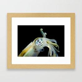 Squid #2 Framed Art Print