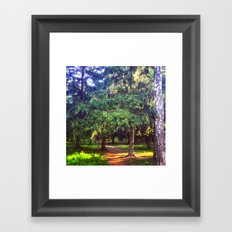 Morning walk Framed Art Print