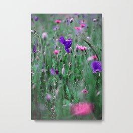 Poppies xp Metal Print