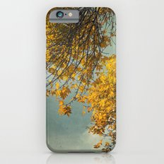 Yellow Autumn iPhone 6s Slim Case