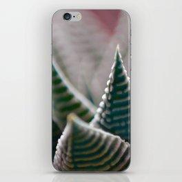 #132 iPhone Skin