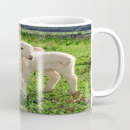 Spring Lambs Grazing On Farmland Coffee Mug
