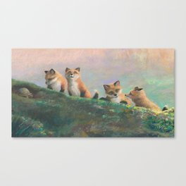 Red Fox Kits First Outing Canvas Print