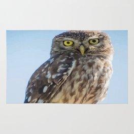 Cute Barn Owl Making Eye Contact Vector Rug