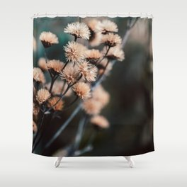 Seeds Of Change #1 Shower Curtain