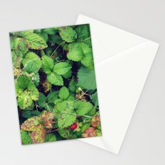 Blanketed Stationery Cards