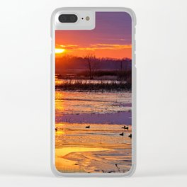 Duck Hole Clear iPhone Case