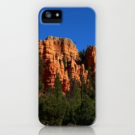 Dixie Forest Hoodoos iPhone Case