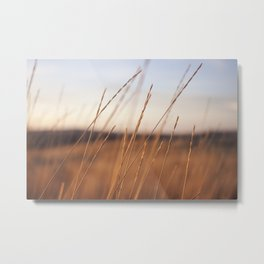 Fall Sunset Photography Print Metal Print