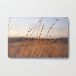Fall Sunset Photography Print Metal Print