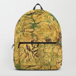 Panoramic Map of Yellowstone National Park Backpack