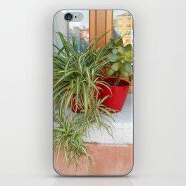 House Plants in Burano iPhone Skin
