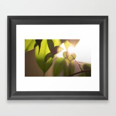 Nature love Framed Art Print