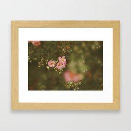 flower photography by Elina Bernpaintner Framed Art Print