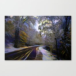 Rural road in winter forest Canvas Print