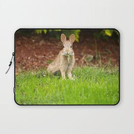 Young Healthy Wild Rabbit eating fresh Grass from Yard Laptop Sleeve