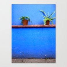 Standing sentry at La Casa Azul Canvas Print