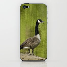 Goose Call iPhone Skin