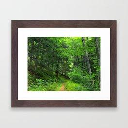 Forest 5 Framed Art Print