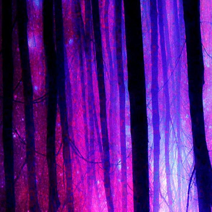 Magical Forest Path Fuchsia Purple Blue Leggings