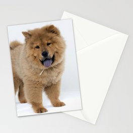 Chow Chow Puppy Stationery Cards
