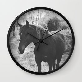 Horse VI _ Photography Wall Clock