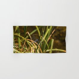 Dragonfly in the marsh Hand & Bath Towel