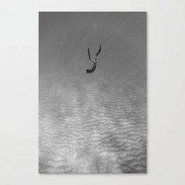 160819-8629 Canvas Print