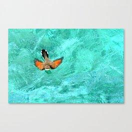 Swimming Bird Canvas Print