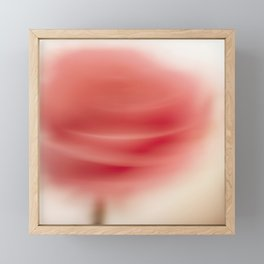 Blurred rose Framed Mini Art Print