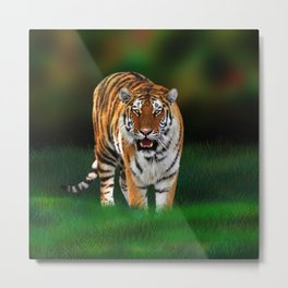 Tiger on Green Metal Print