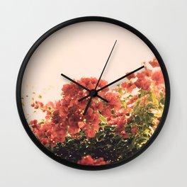 Bouganvillea Morning #3 Wall Clock