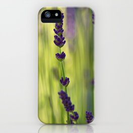 lavender 1 iPhone Case