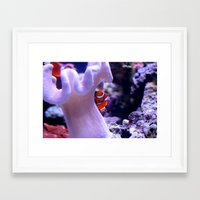 nemo Framed Art Prints featuring Nemo by Hugin