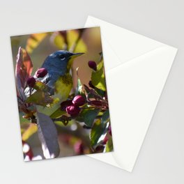 Northern Parula in the Crabapple Tree Stationery Cards