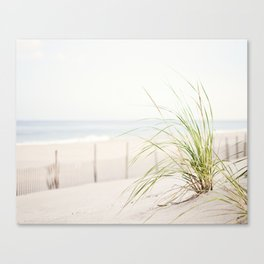 Beach Grass Coastal Photography, Seashore Jersey Shore Photograph Canvas Print