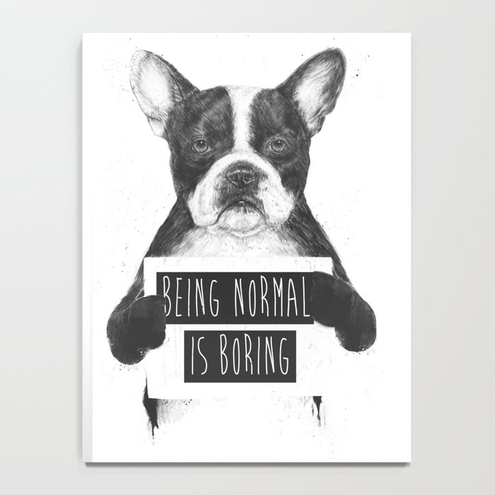 Being normal is boring Notebook