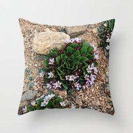 Alpine Spring beauty Colorado Throw Pillow