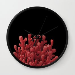Red Beard Sponge Wall Clock