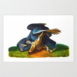 Black Vulture or Carrion Crow Audubon Birds Vintage Scientific Hand Drawn Illustration Art Print