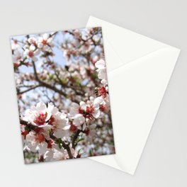 Pink Tree Blossom Stationery Cards