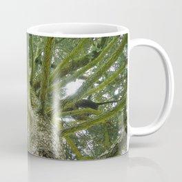 To The Trees Coffee Mug