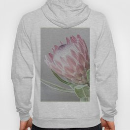 Protea In Isolation Hoody
