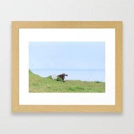 Rosa Cow Framed Art Print