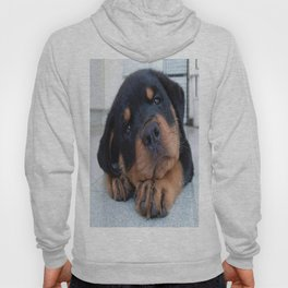 Riley  🐾  The Rottweiler Puppy  🐾 Hoody