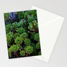 Succulent valley Stationery Cards