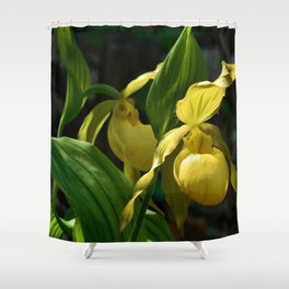 Rhode Island Wild Orchid Lady Slipper Flowers Shower Curtain