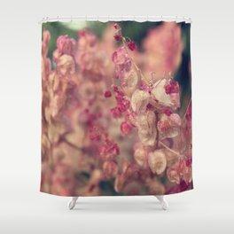 Rumex flower Shower Curtain