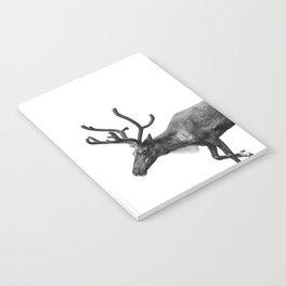 Animal Photography   Reindeer Minimalism   Antlers Christmas   Rudolf Notebook