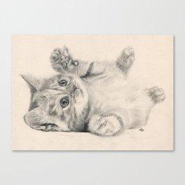 Rub my belly... Canvas Print